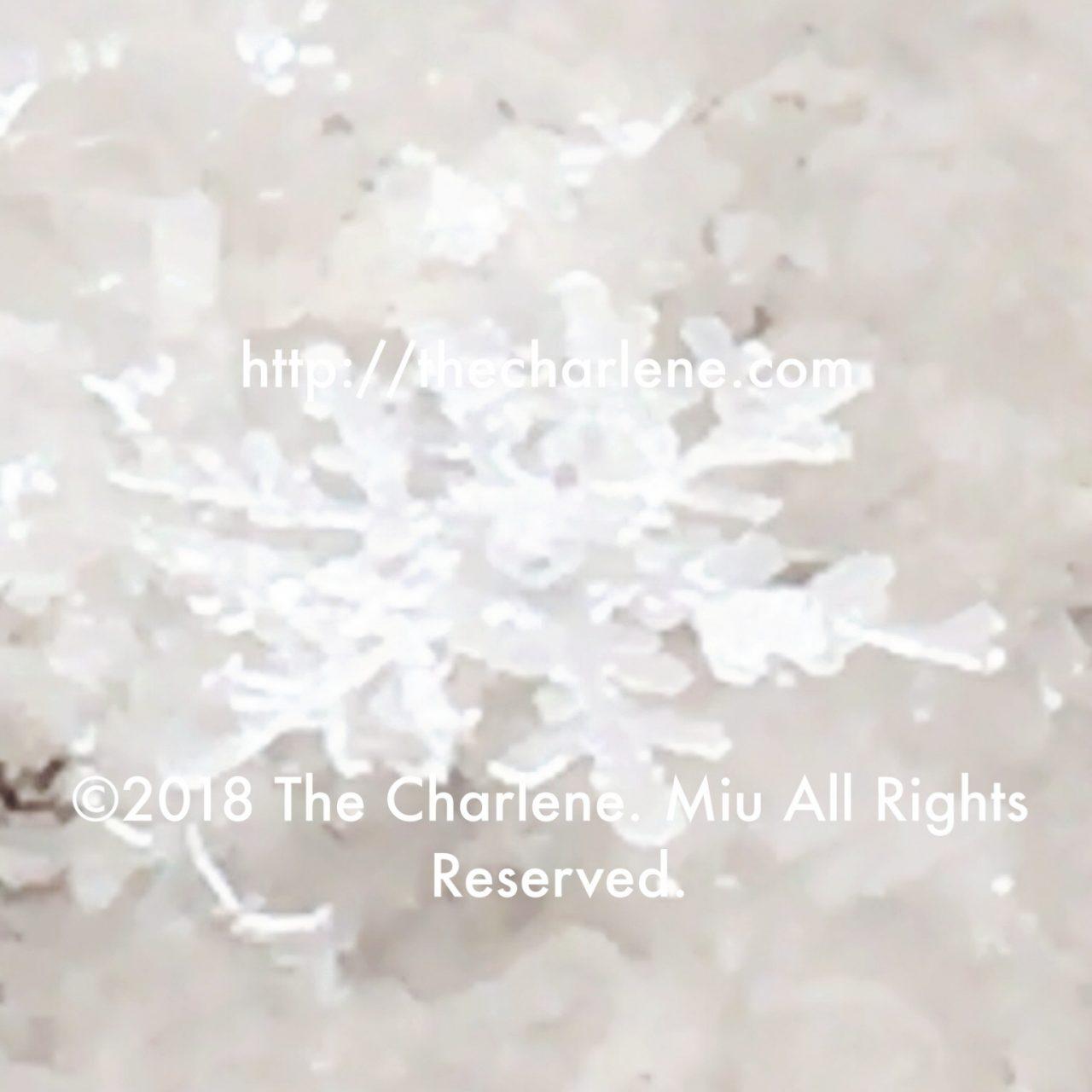 雪の結晶、樹枝六花(じゅしろっか)©2018 The Charlene. Miu All Rights Reserved.