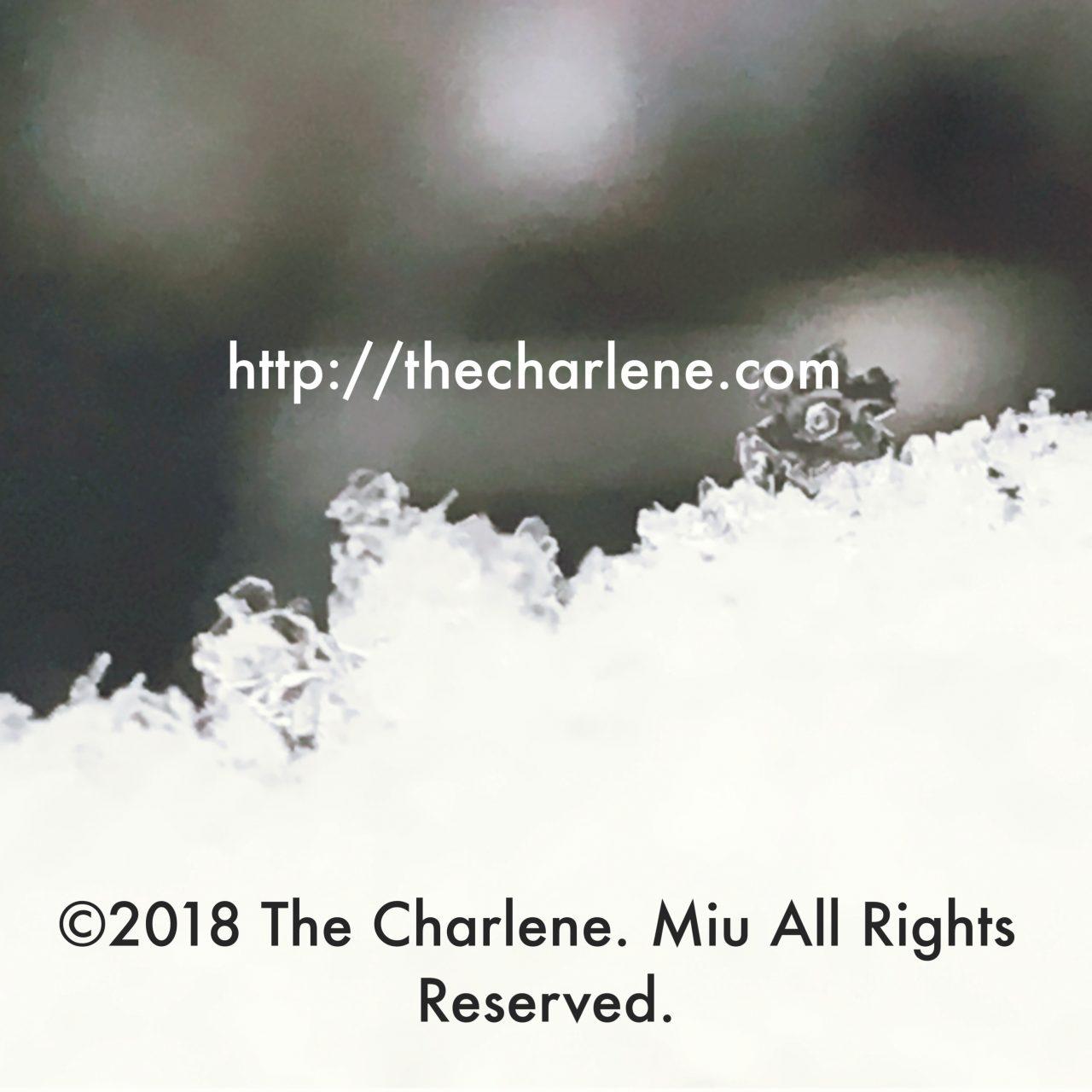 雪の結晶、広幅六花(ひろはばろっか)©2018 The Charlene. Miu All Rights Reserved.