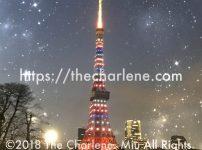 東京タワーのイルミネーション「東京マラソン2018開催記念特別ライトアップ」