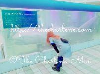 ©︎The Charlene. Miu http://thecharlene.com